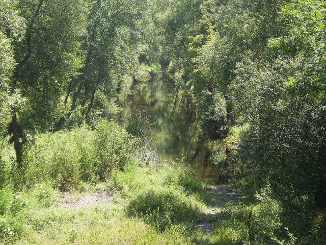 Bike Trail 1