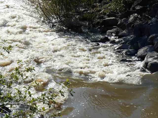 Rain Water 4