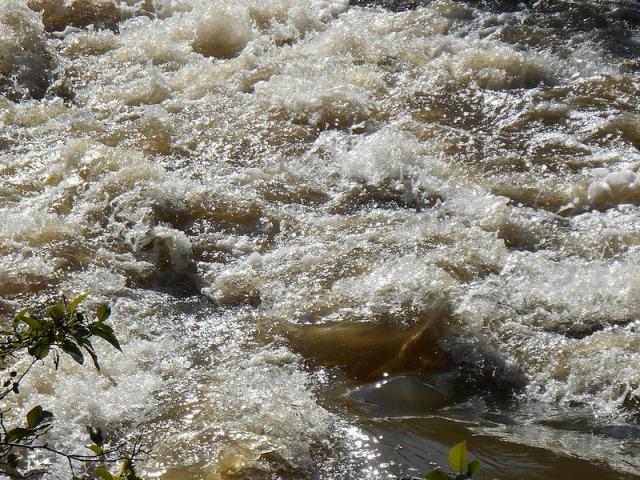Rain Water 5