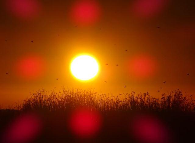 sunrise-4